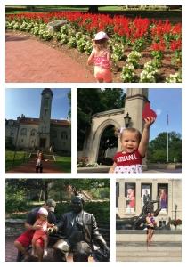 campus_collage