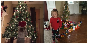 Christmas_trees_collage