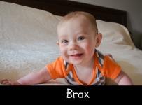 brax-blog