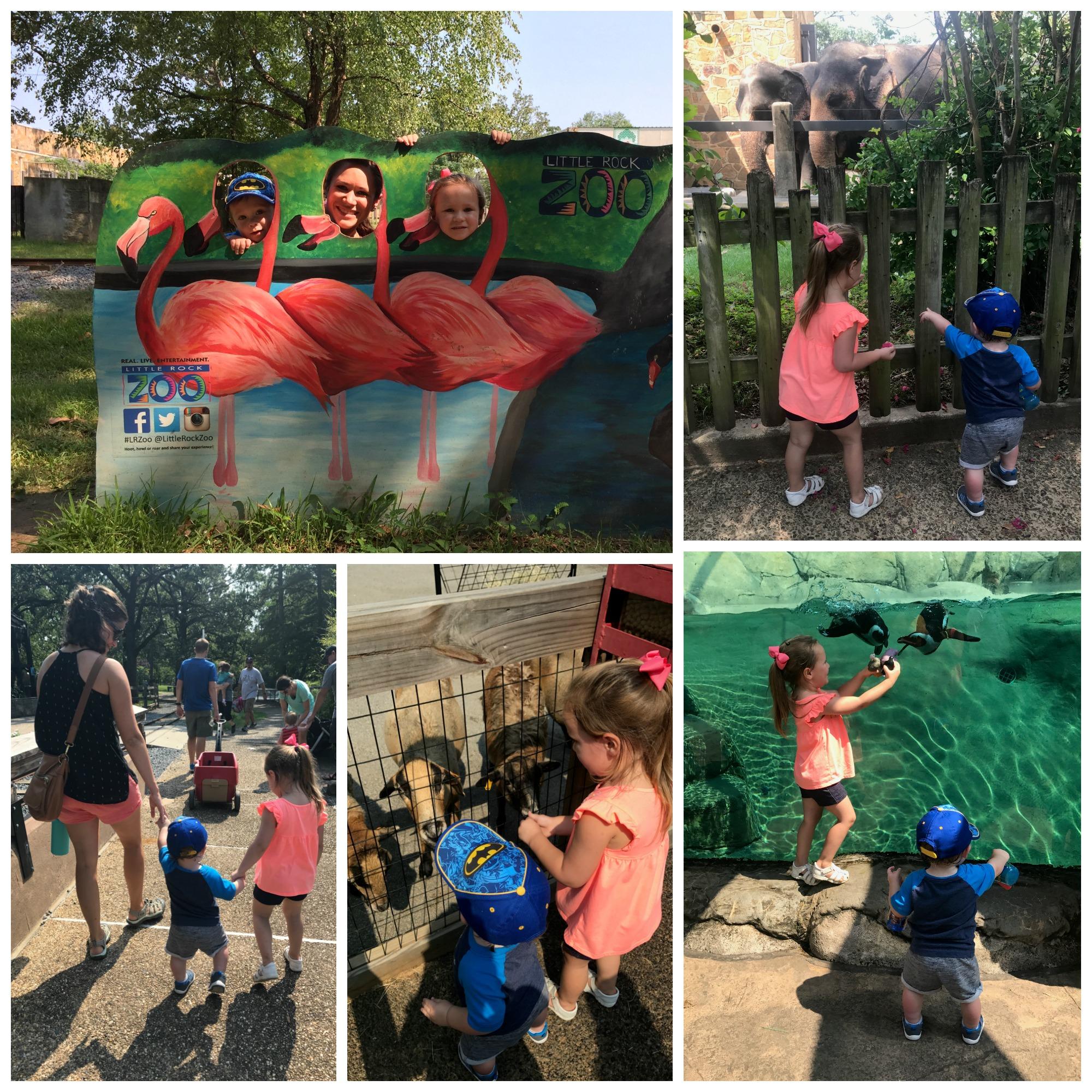 LDW-zoo