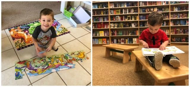 Brax-bookspuzzles