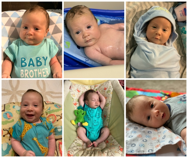 Brody-2months-faces
